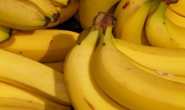 A team of researchers were able to develop a protein found in bananas into a potential broad-spectrum anti-viral drug. (Photo : Hans Braxmeier)